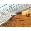 山东日光温室|潍坊信誉好的日光温室建造公司,当属宏晟自动化温